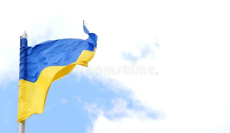 Украинский флаг стоковая фотография
