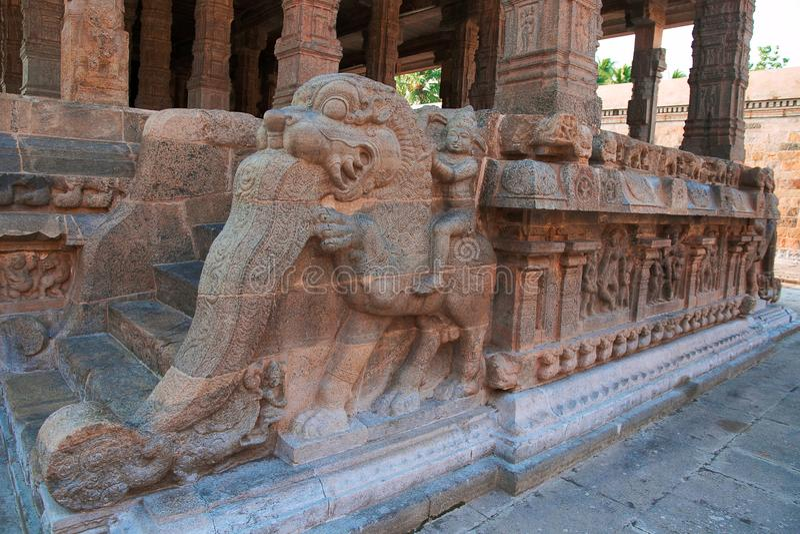 Украшение всадников yeli, святыня балюстрады Deivanayaki Аммана, за виском Airavatesvara, Darasuram, Tamil Nadu стоковые изображения