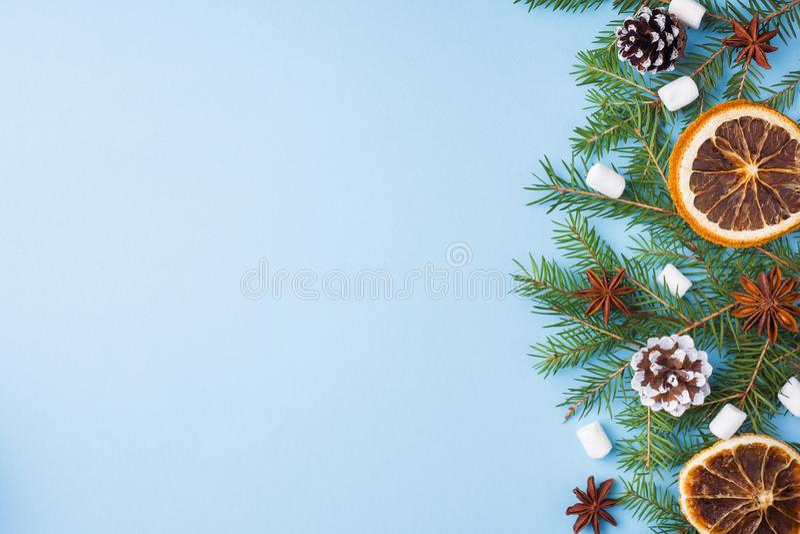 Украшение для концепции рождества Рождественская елка конусов сосны специй апельсинов еды чокнутая на голубой пастельной предпосы стоковое фото rf