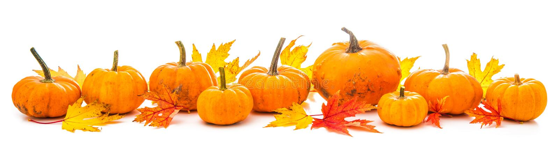 Украшение осени аранжировало с сухими листьями и тыквами i стоковые изображения rf