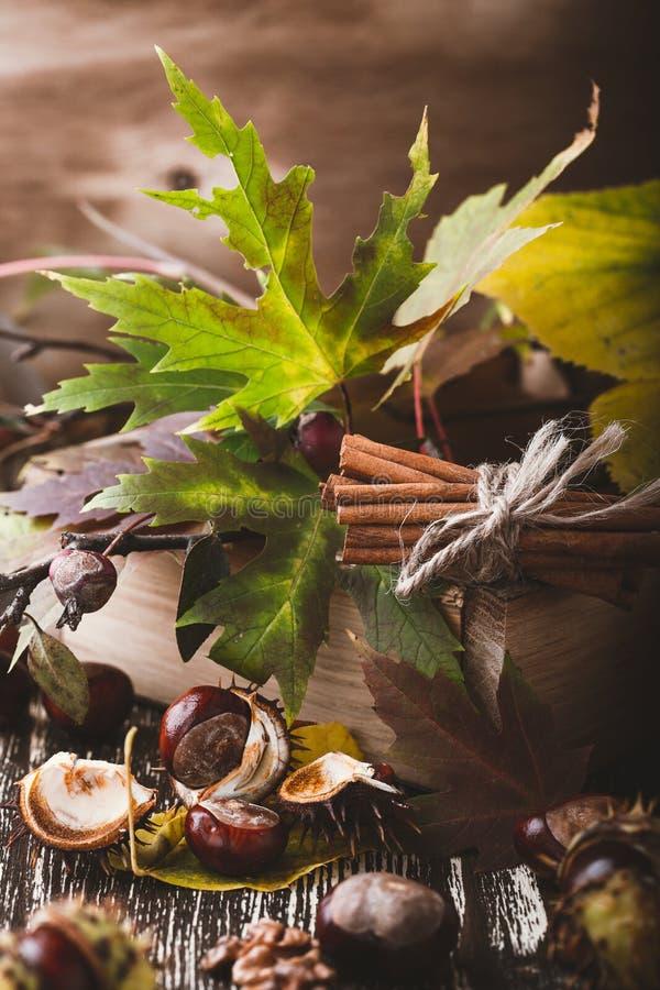 Украшение осени домашнее с каштанами, грецкими орехами, циннамоном, leav стоковые фото