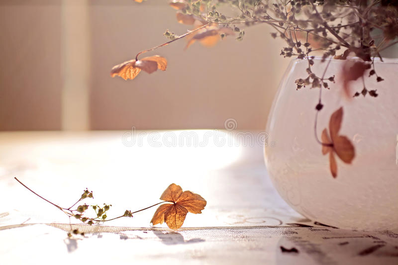 украшение осени стоковое фото rf