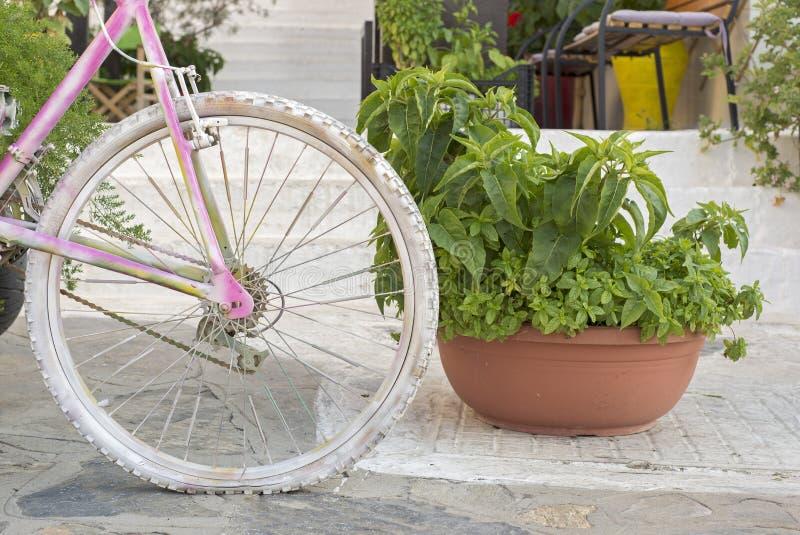 Украшение улицы с цветками и велосипедом стоковое изображение rf