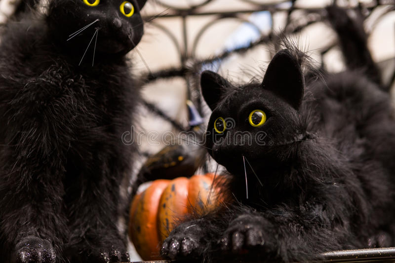 Украшения хеллоуина стоковое изображение rf
