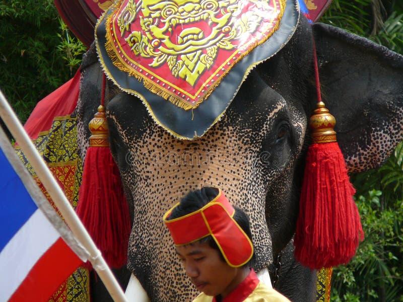 Украшенный слон смотря его мастера стоковая фотография