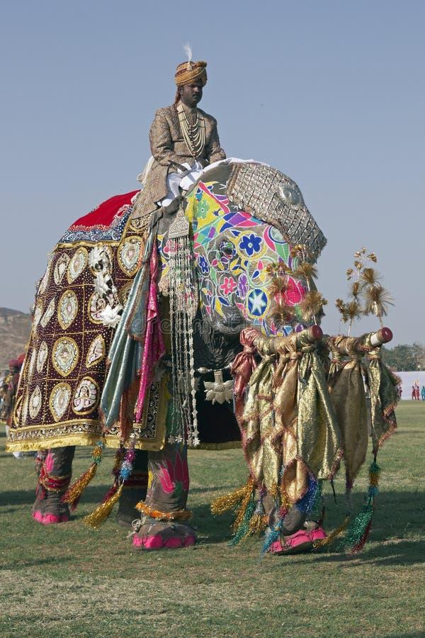 украшенный riding mahout слона стоковое изображение rf