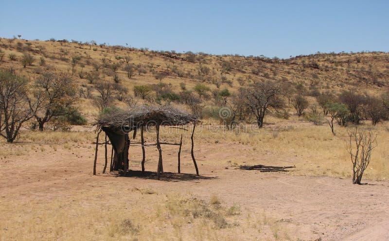 Укрытие ветвей дерева в африканском солнце стоковое фото