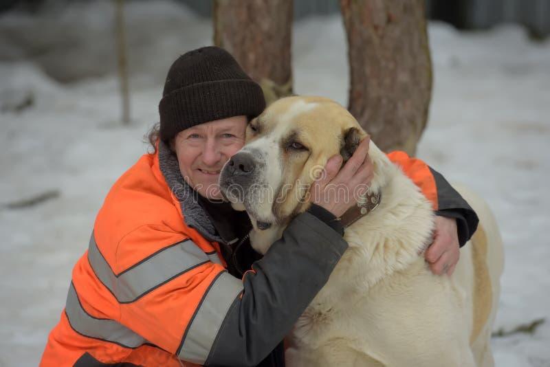 Укрытие для бездомных собак больших пород Работник укрытия с alabai стоковые изображения