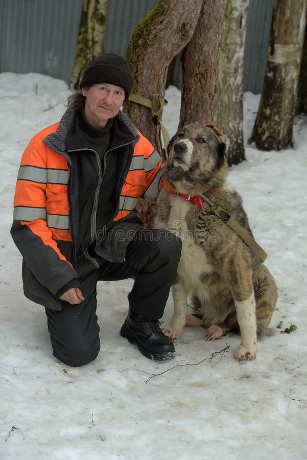Укрытие для бездомных собак больших пород Работник укрытия с alabai стоковая фотография