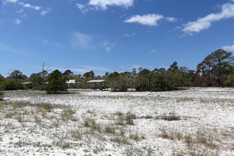 Укрытия, деревья, кусты и травы пикника на песчаном пляже паркуют стоковая фотография