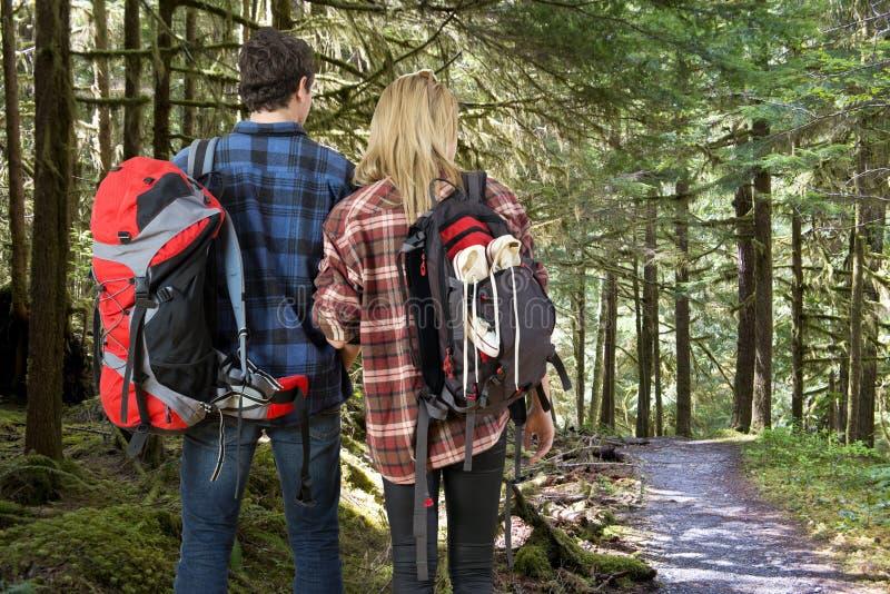 Укладывая рюкзак пары в лесе стоковое изображение rf