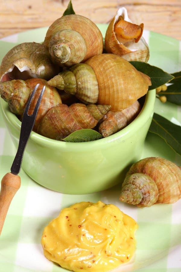 улитки продуктов моря моря whelks стоковые изображения