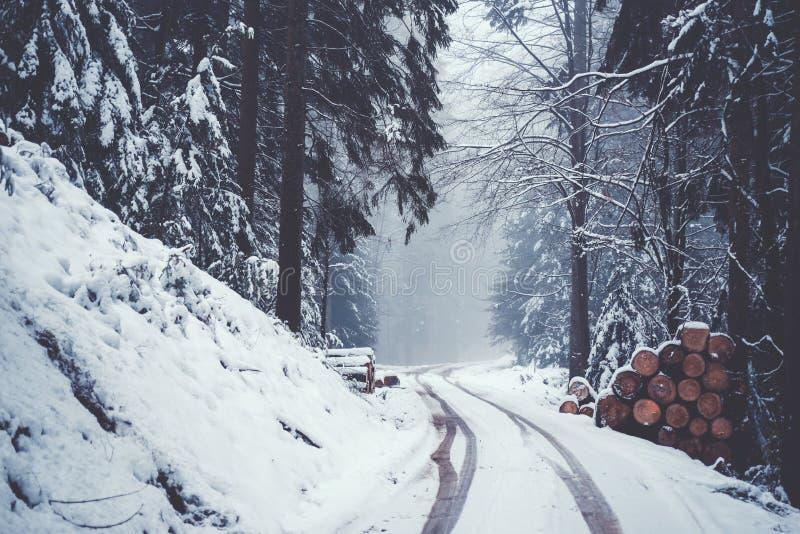 Улица в снежном лесе горы стоковое изображение