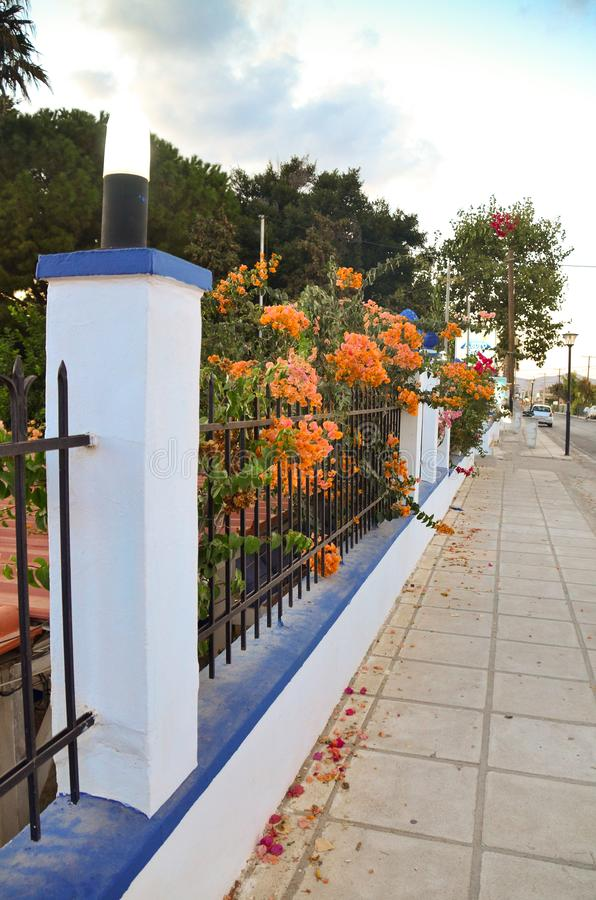 Улица Греции с голубой и белой загородкой с оранжевыми цветками зонтики померанца kos kefalos острова Греции стулов пляжа Греция стоковые фото