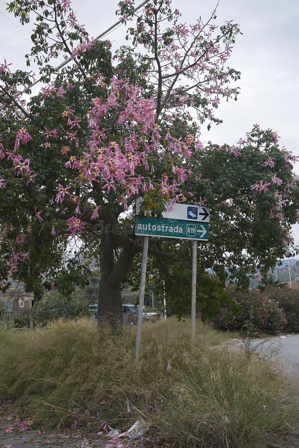 Улица подписывает внутри конечные станции Imerese стоковая фотография