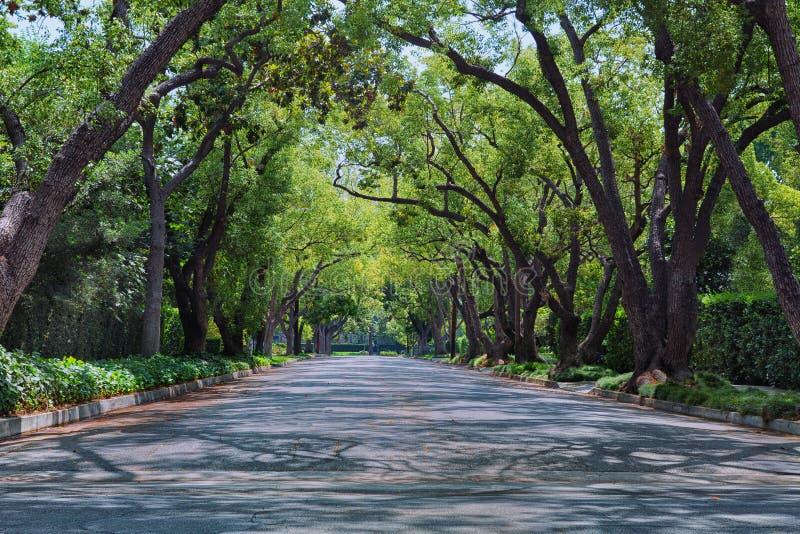 улица района стоковое изображение rf
