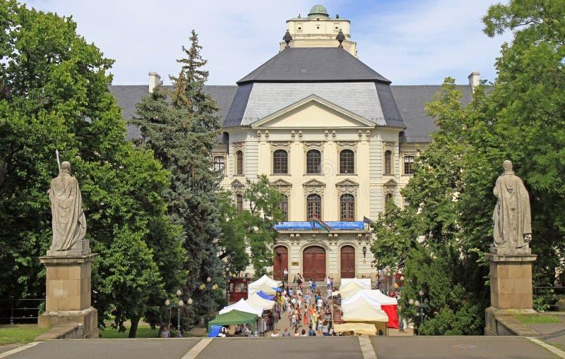 Улица справедливая на ежегодном фольклорном фестивале в Eger, Венгрии стоковое изображение rf