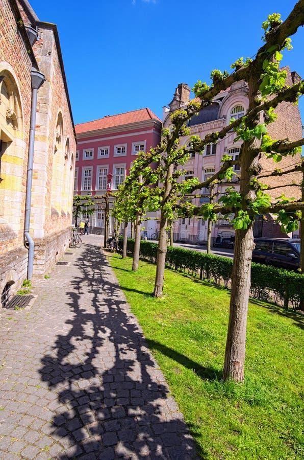 Улица с винтажными каменными домами и необыкновенными деревьями Красивое фото ландшафта города весны Голландец Брюгге: Brugge, Бе стоковые изображения rf