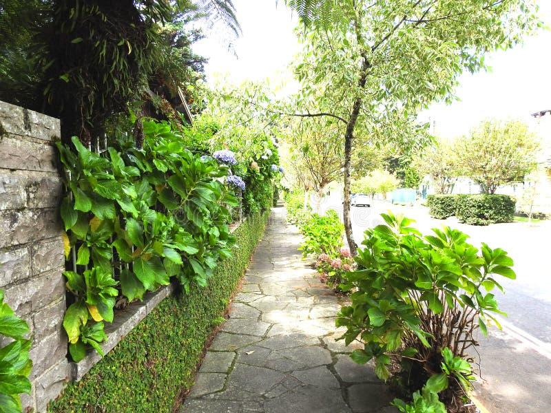 Улица Flowerна Gramado стоковые фотографии rf