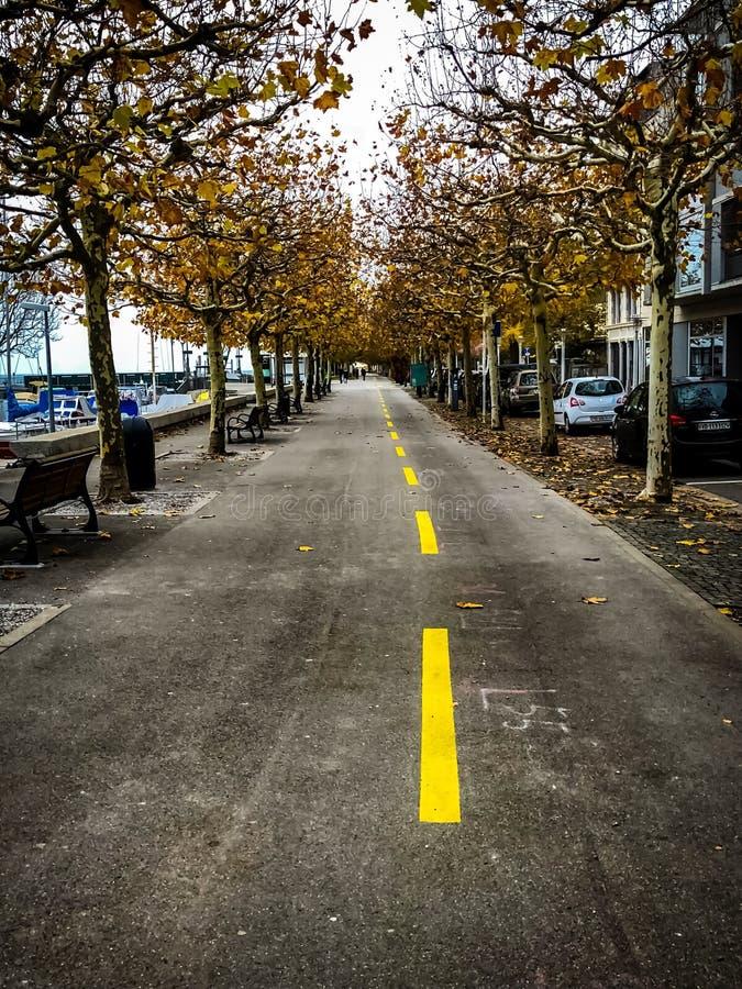 Улицы осени стоковое фото rf