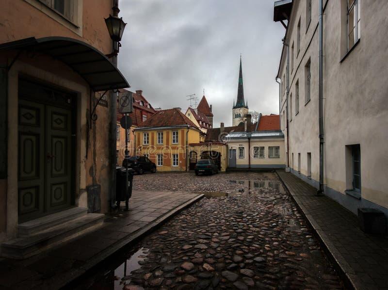 Улицы старого городка Таллина эстония стоковая фотография