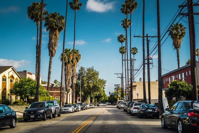 улицы angeles los Современная улица в жилом районе на бульваре Мелроуза стоковая фотография