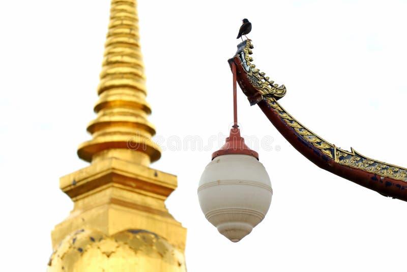 Уличный фонарь тайской винтажной шлюпки форменный с черной птицей садясь на насест на верхнем и золотом Chedi в предпосылке, Nan, стоковая фотография rf