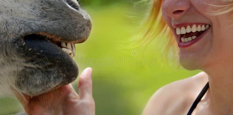 Улыбки счастливых девушки и лошади стоковая фотография rf