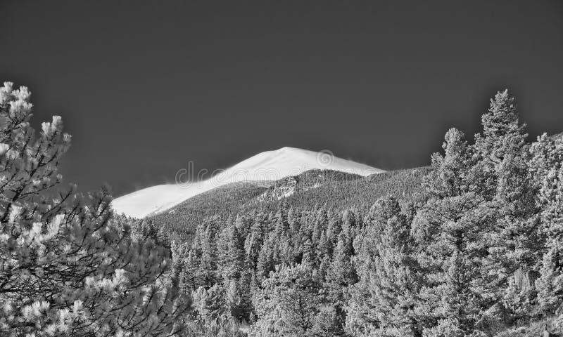 Ультракрасное изображение скалистых гор вне Больдэра, Колорадо стоковая фотография rf