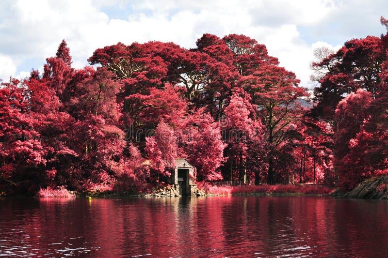 Ультракрасный ландшафт района озера стоковое изображение