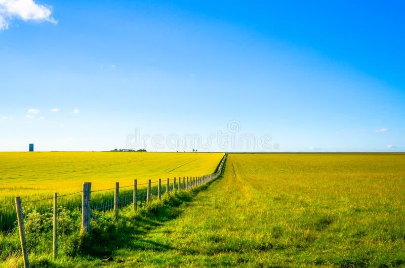 Умаляя перспектива загородки сельской местности стоковые фото