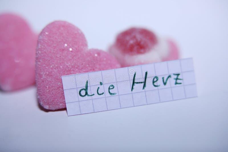 Умирает слово Herz в немце для сердца в английском стоковое изображение rf