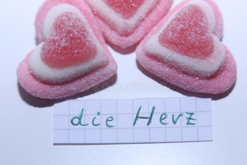 Умирает слово Herz в немце для сердца в английском стоковые изображения