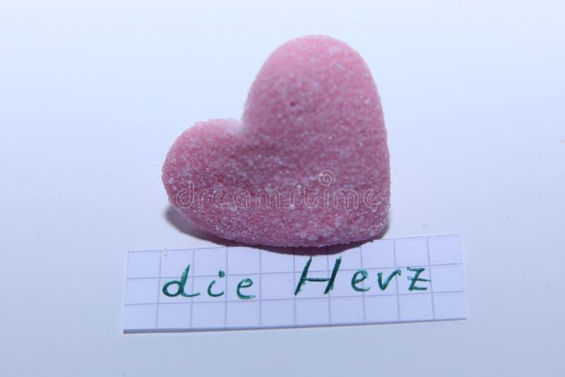 Умирает слово Herz в немце для сердца в английском стоковые фото