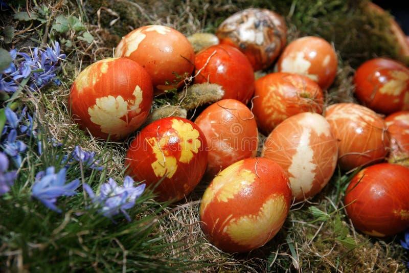 Умирать пасхальных яя стоковые фотографии rf