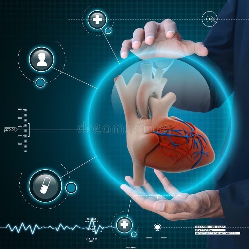 Умная рука показывая человеческое сердце стоковое изображение rf
