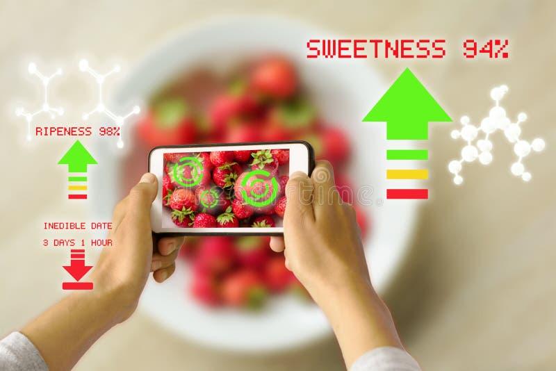 Умным увеличенный прибором проверять спелости еды реальности стоковое изображение rf