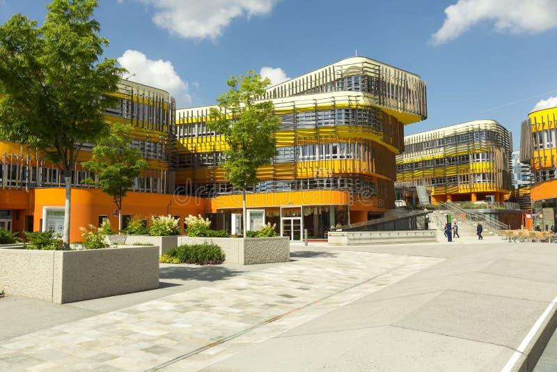 Университетский кампус вены стоковое изображение