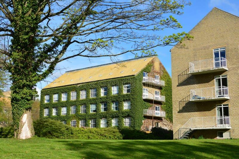 Университетский кампус Орхуса стоковая фотография
