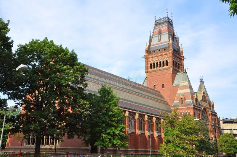 университет мемориала harvard ma залы cambridge стоковые изображения rf
