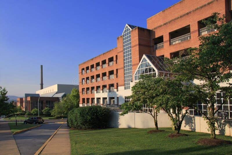 университет Теннесси кампуса стоковые изображения