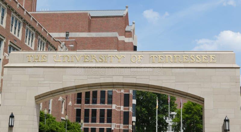 университет Теннесси стоковое изображение