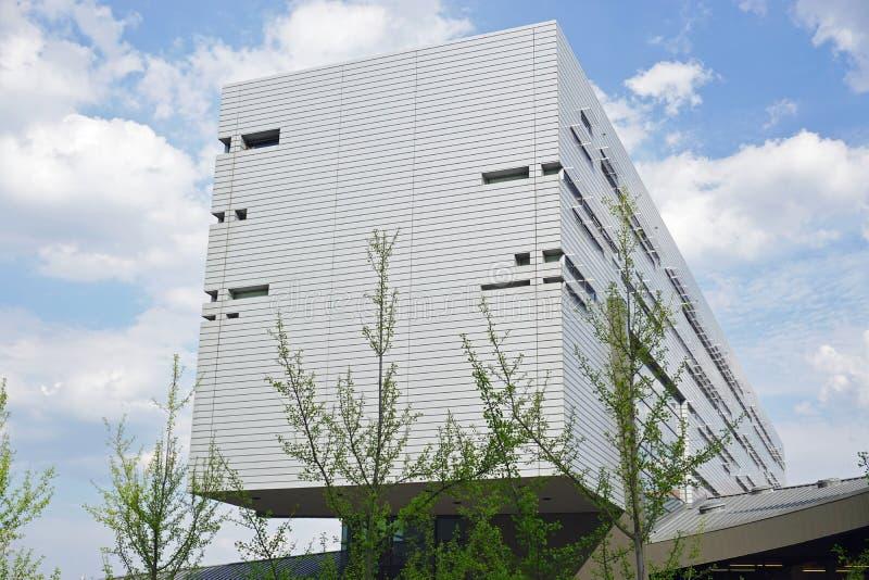 Университет Цинциннати, Огайо стоковые фотографии rf