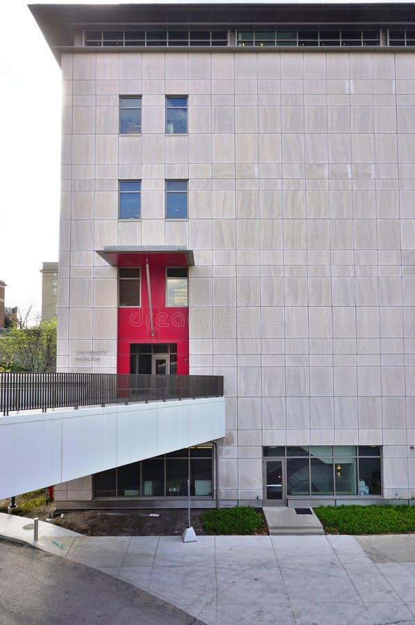 Университет Цинциннати, Огайо стоковое изображение rf