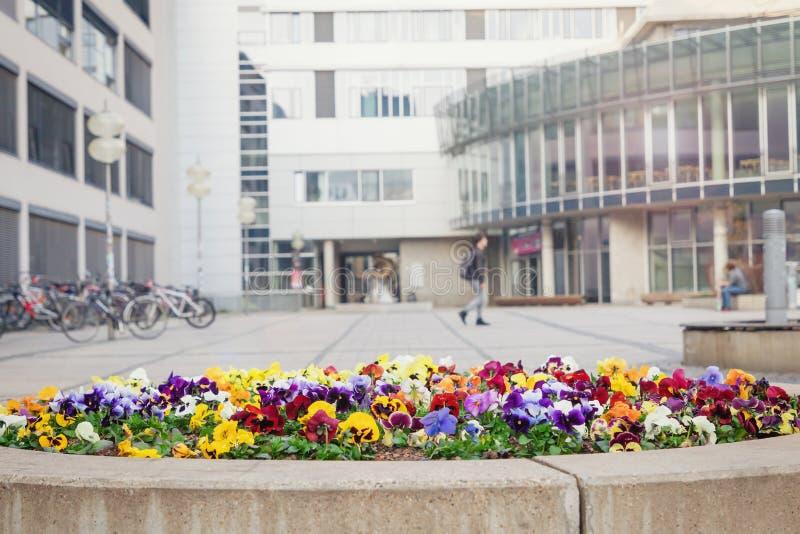 Университет Friedrich Schiller в Йене, Германии Известная немецкая средняя школа стоковая фотография