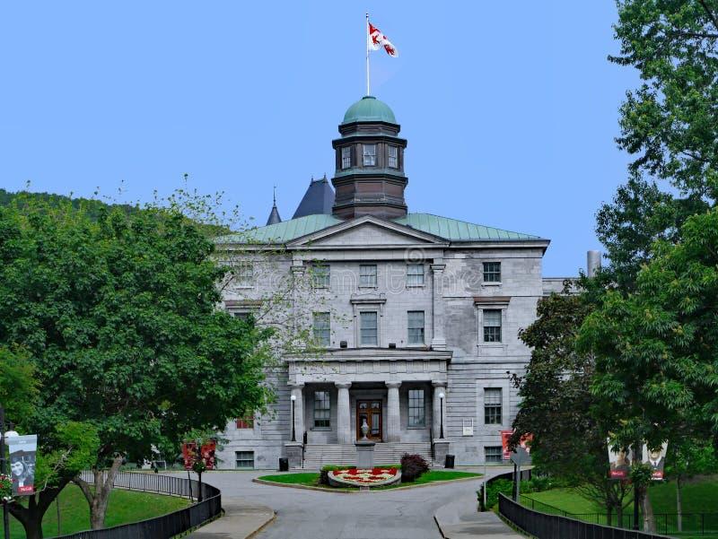 Университет McGill, Монреаль стоковые изображения rf