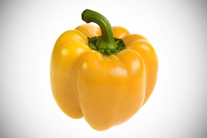 Уникально желтый болгарский перец на белой предпосылке с акцентом виньетирования стоковые изображения