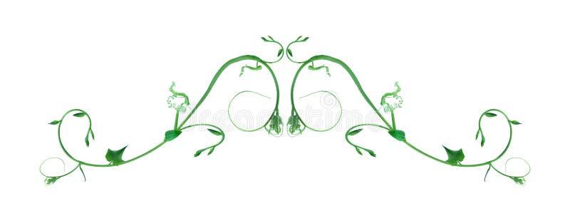 Уникальную верхнюю часть форм лист изолированная граница леса с белой предпосылкой, творческим планом, можно использовать как лог иллюстрация штока