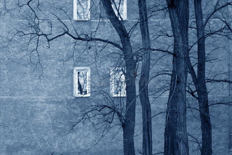 унылые окна стоковое изображение