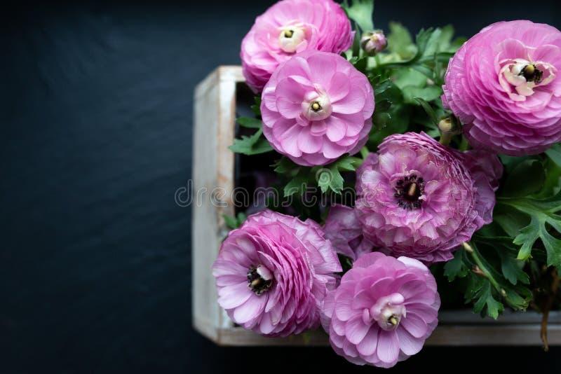 Унылые пурпурные цветки в коробке цветка, предпосылке, карте приглашения стоковые изображения rf